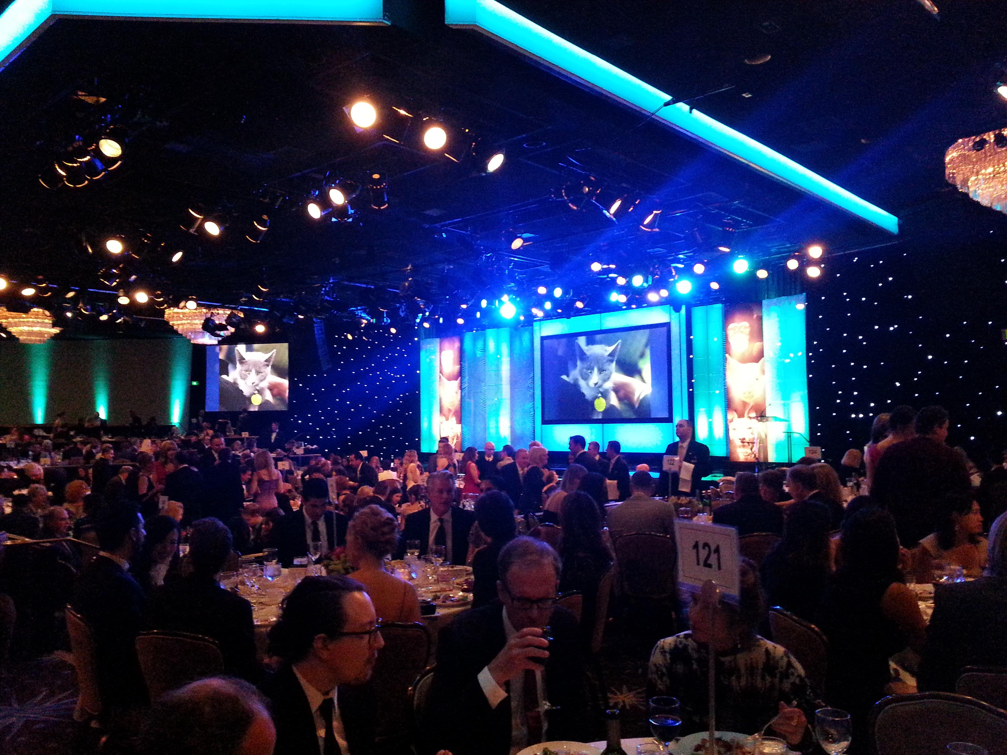 Genesis Awards, 2013
