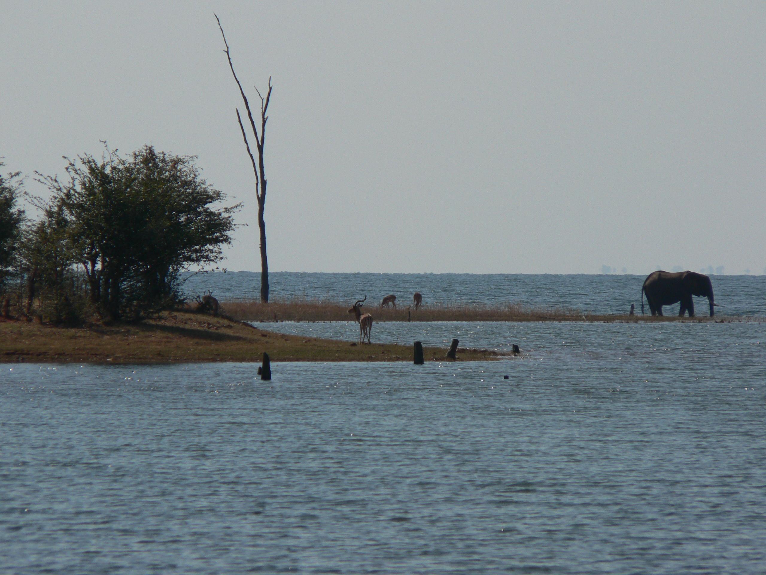Lake Kariba, Zimbabwe, 2011