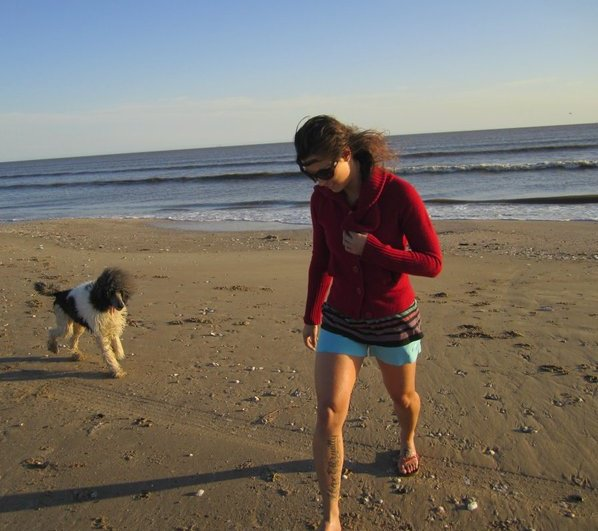 Custody of Companion Animals in Divorce/Separation Cases